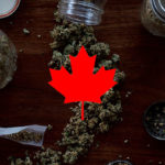 Canada Legalized Marijuana To Combat Organized Crime