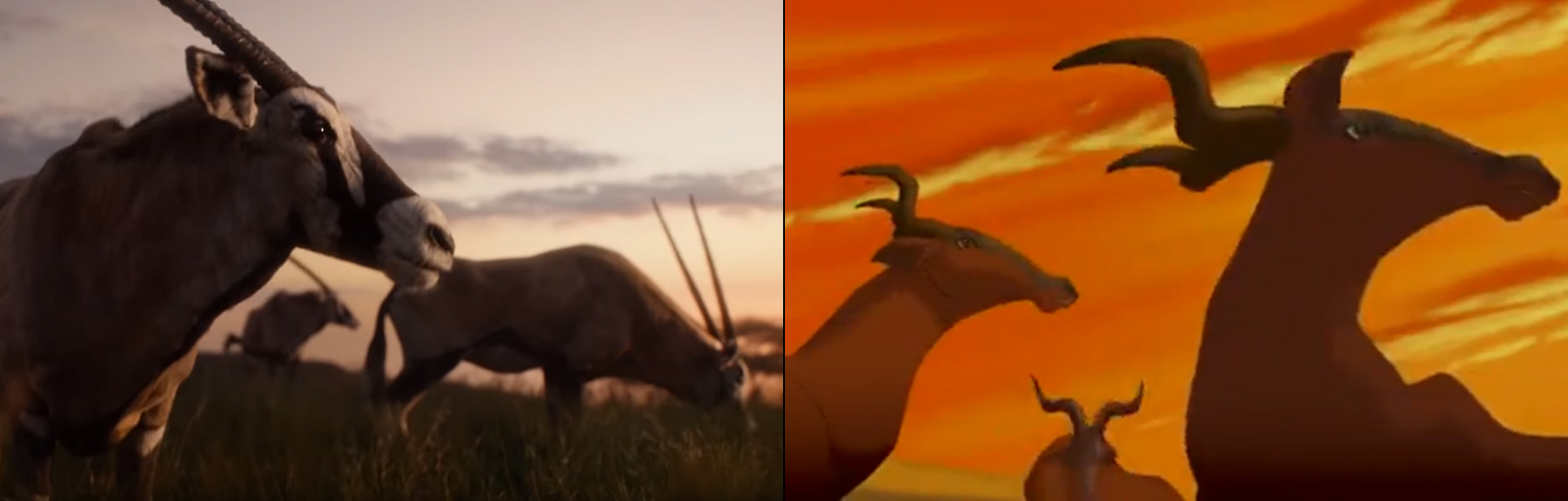 The Lion King Movie Side By Side With The Old